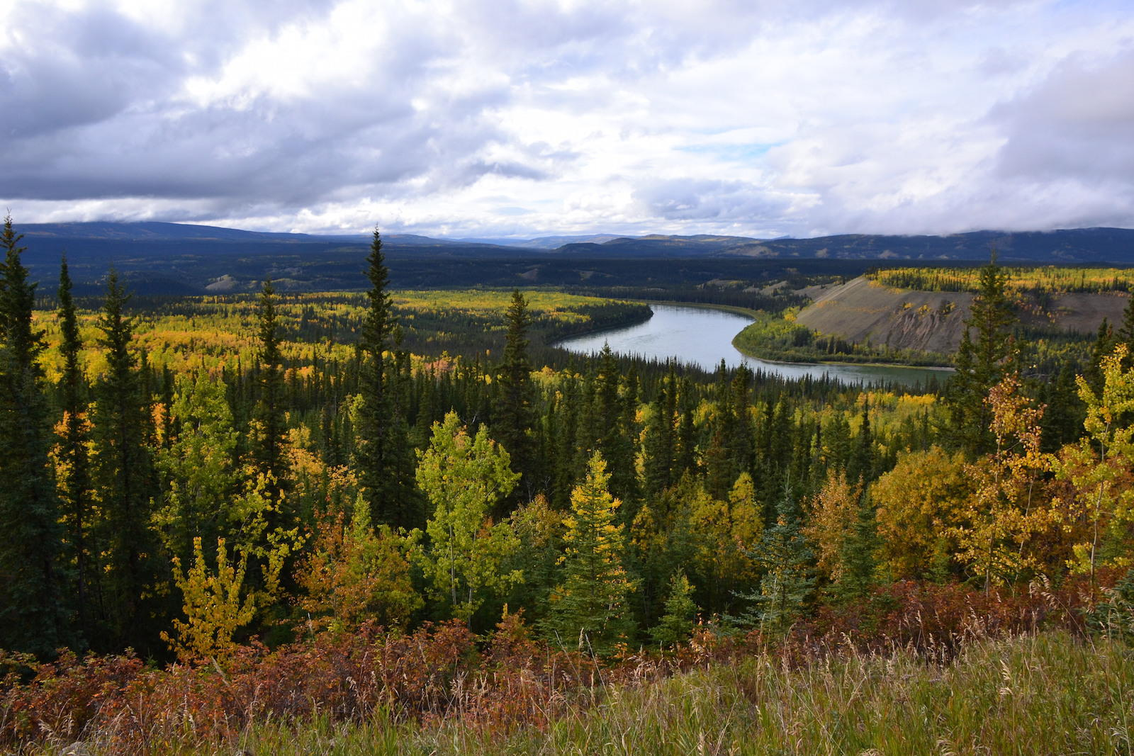 Yukon panorama