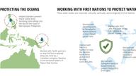 MiningWatch 20th Anniversary Infographic 03