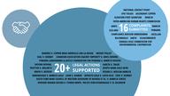 MiningWatch 20th Anniversary Infographic 09